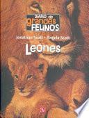 libro Diario De Grandes Felinos : Leones