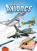 libro Dibujo Y Pinto Aviones