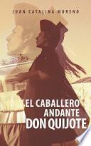 libro El Caballero Andante Don Quijote