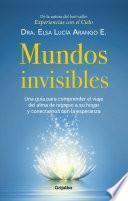 libro Mundos Invisibles