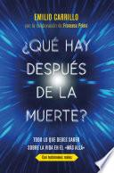 libro ¿qué Hay Después De La Muerte?