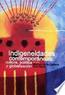 libro Indigeneidades Contemporáneas: Cultura, Política Y Globalización