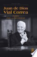 libro Juan De Dios Vial Correa