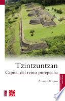libro Tzintzuntzan