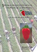 libro Sistemas Productivos Locales En Palos De La Frontera